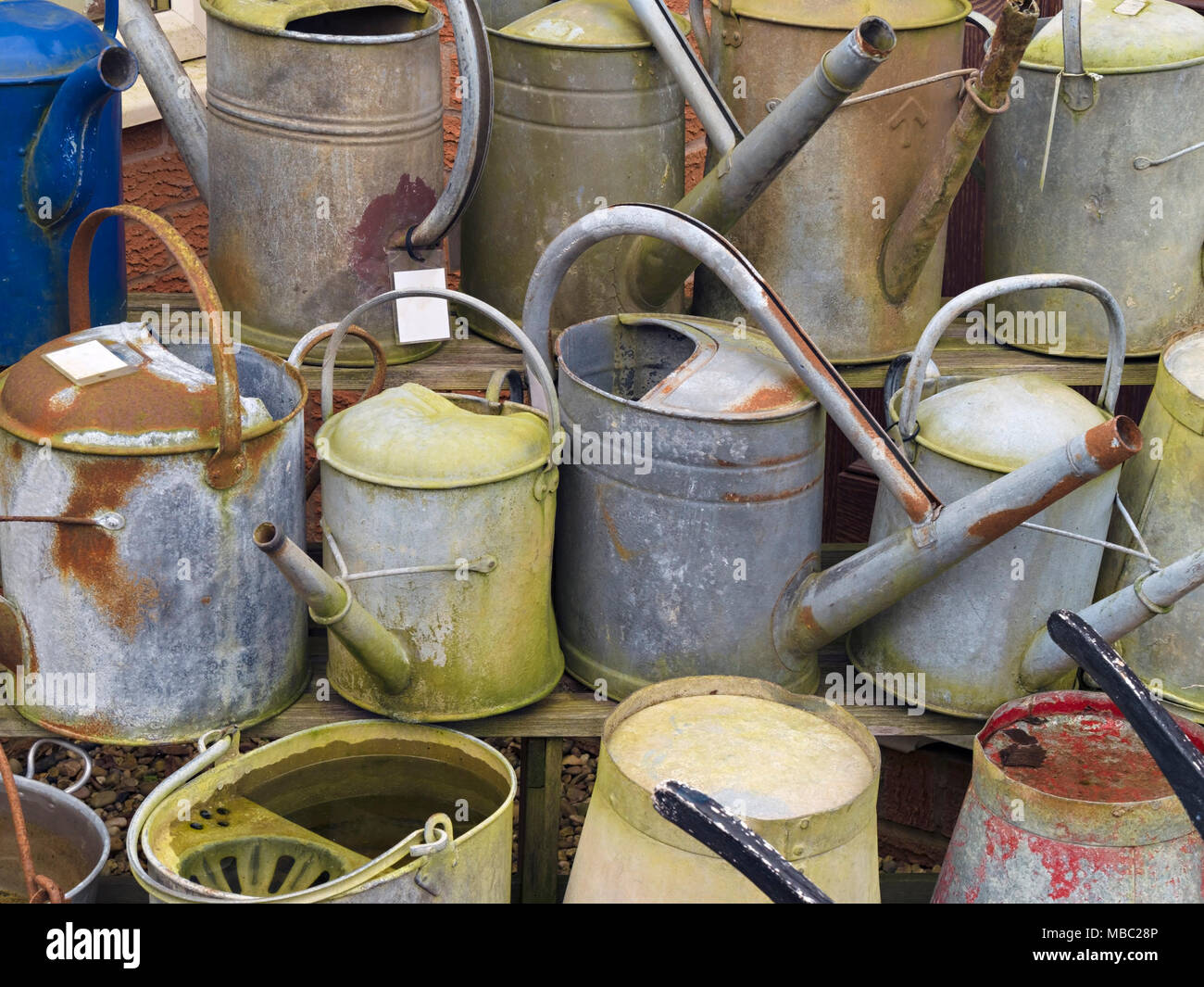 Old zinc galvanised metal garden watering cans for sale in reclamation yard, Garden Classics, Ashwell, Rutland, England, UK - Stock Image