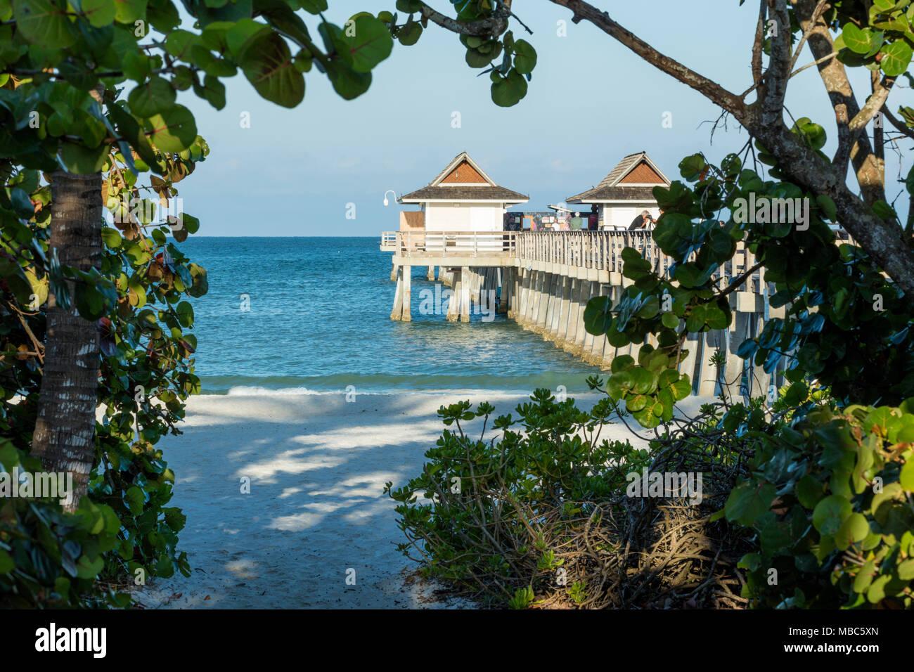 Early morning at the Naples Pier along Florida's Gulf Coast, Naples, Florida, USA - Stock Image
