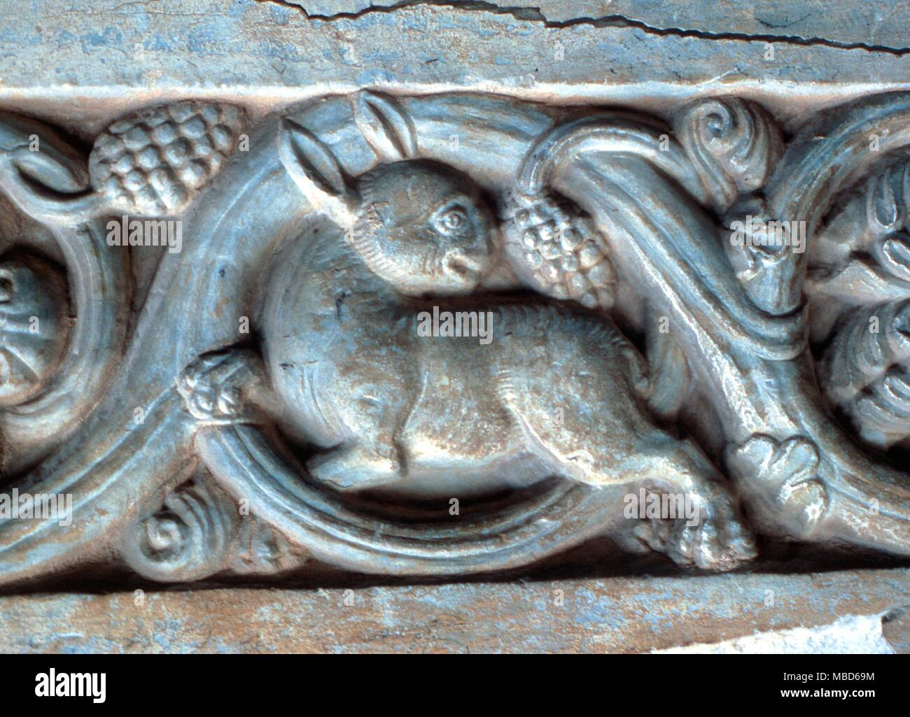 Animals rabbit relief carving of rabbit on the th century