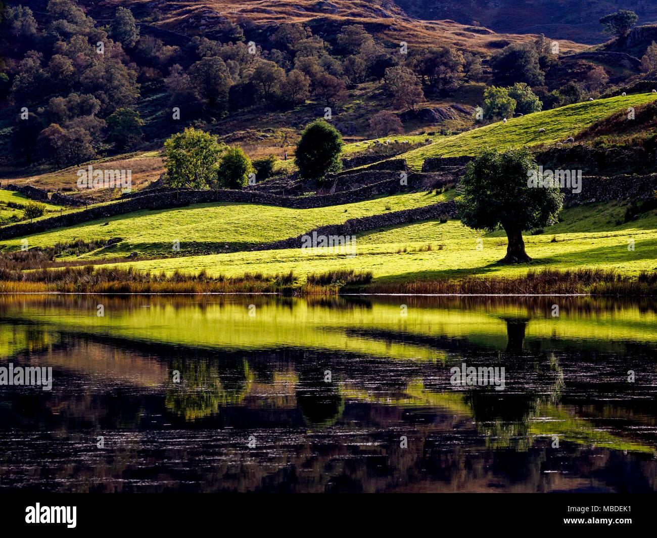 Watendlath Tarn, the Lake District, England. - Stock Image