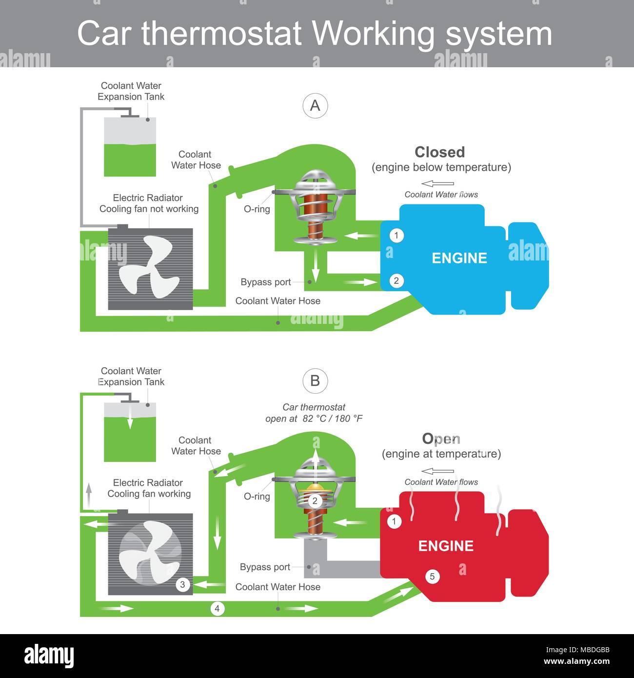 Car Radiator Thermostat Stock Photos & Car Radiator Thermostat Stock ...