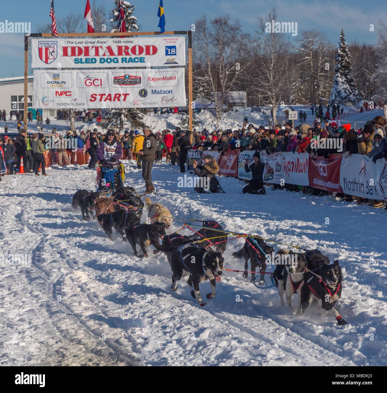 Musher Scott White leaving starting line of 2018 Iditarod - Stock Image