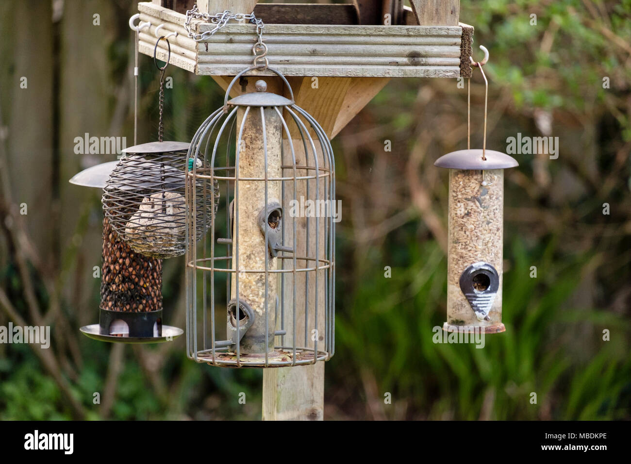 Seed, fat ball and peanut feeders hanging from a garden bird table. Wales, UK, Britain - Stock Image