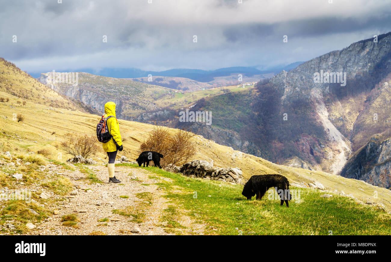 Woman is hiking in Dinaric Alps near Sarajevo, Bosnia-Herzegovina - Stock Image