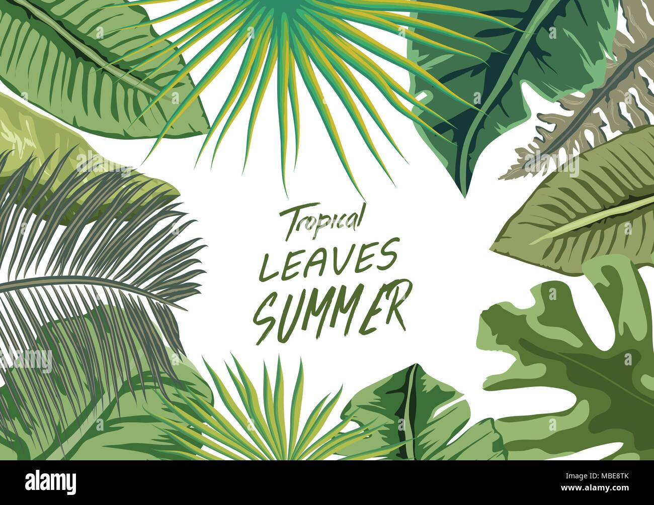 Summer tropical background with flowers. Background with tropical plants - flowers and plants nature - Stock Vector