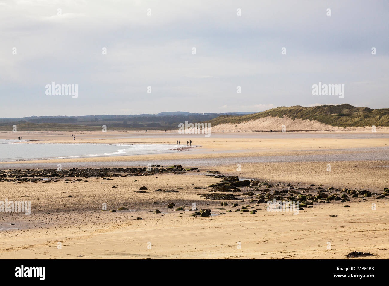 Bamburgh Beach looking towards Seahouses along the Northumberland Coast in Engand UK - Stock Image