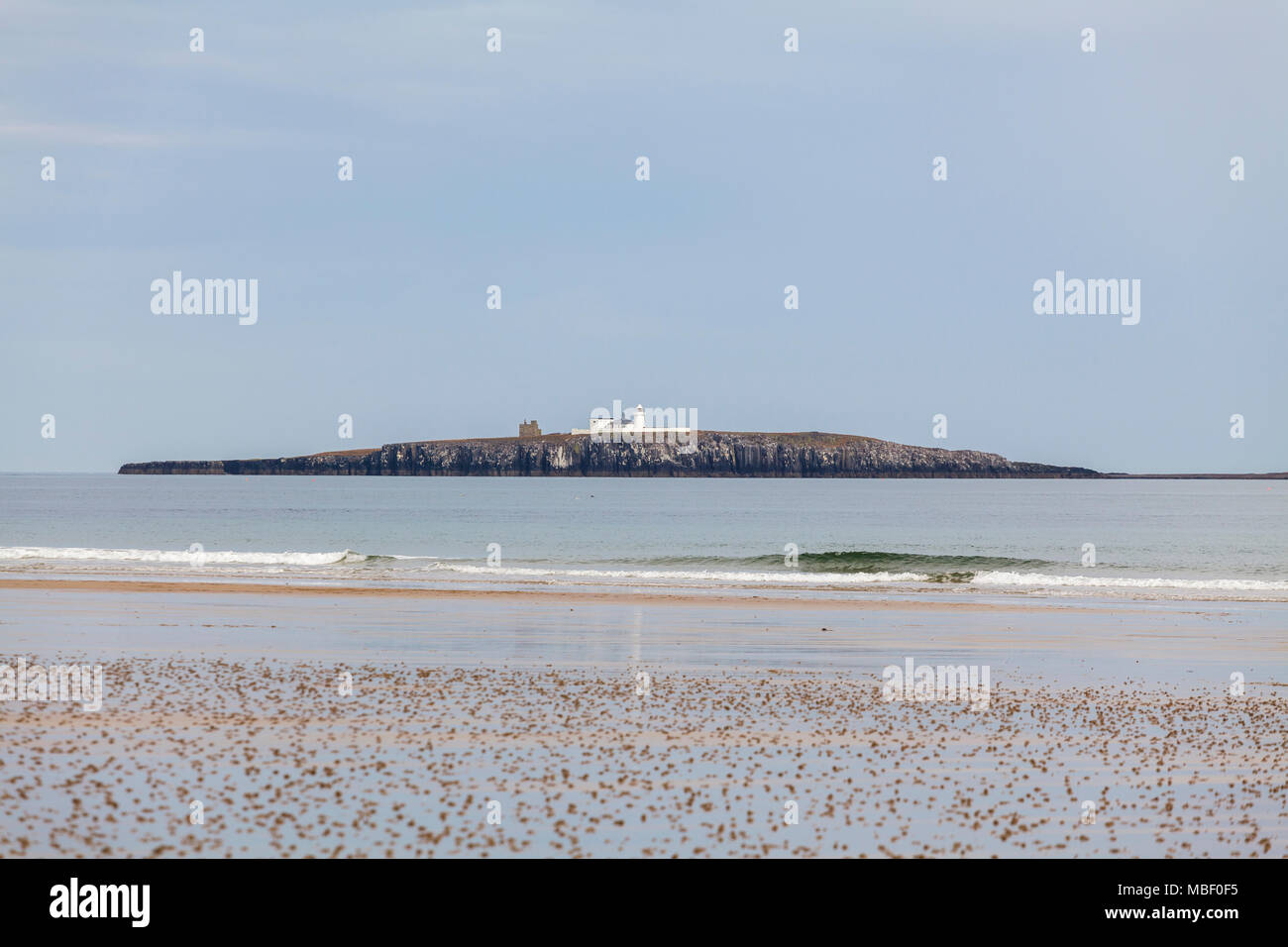 The Farne Islands National Nature Reserve of the Coast of Northumberland, England UK - Stock Image