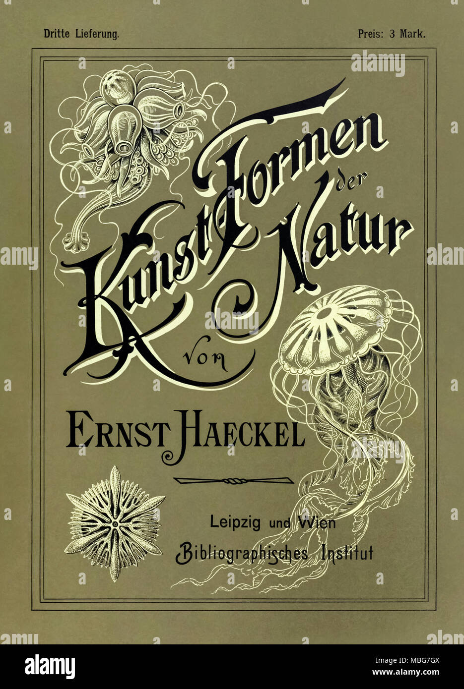 'Kunstformen der Natur' (Art Forms in Nature) front cover of third edition illustrated by Ernst Haeckel (1834-1919), lithograph by Adolf Giltsch (1852-1911) and published by Bibliographisches Institut between 1899 and 1904. See more information below. - Stock Image