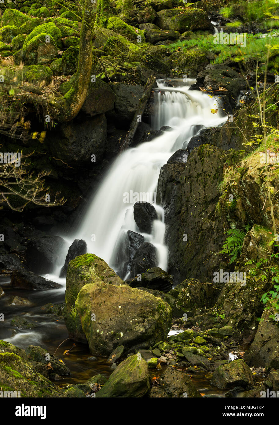 Dob Gill waterfall that ascends into Thirlmere reservoir in the English Lake  District. Stock Photo
