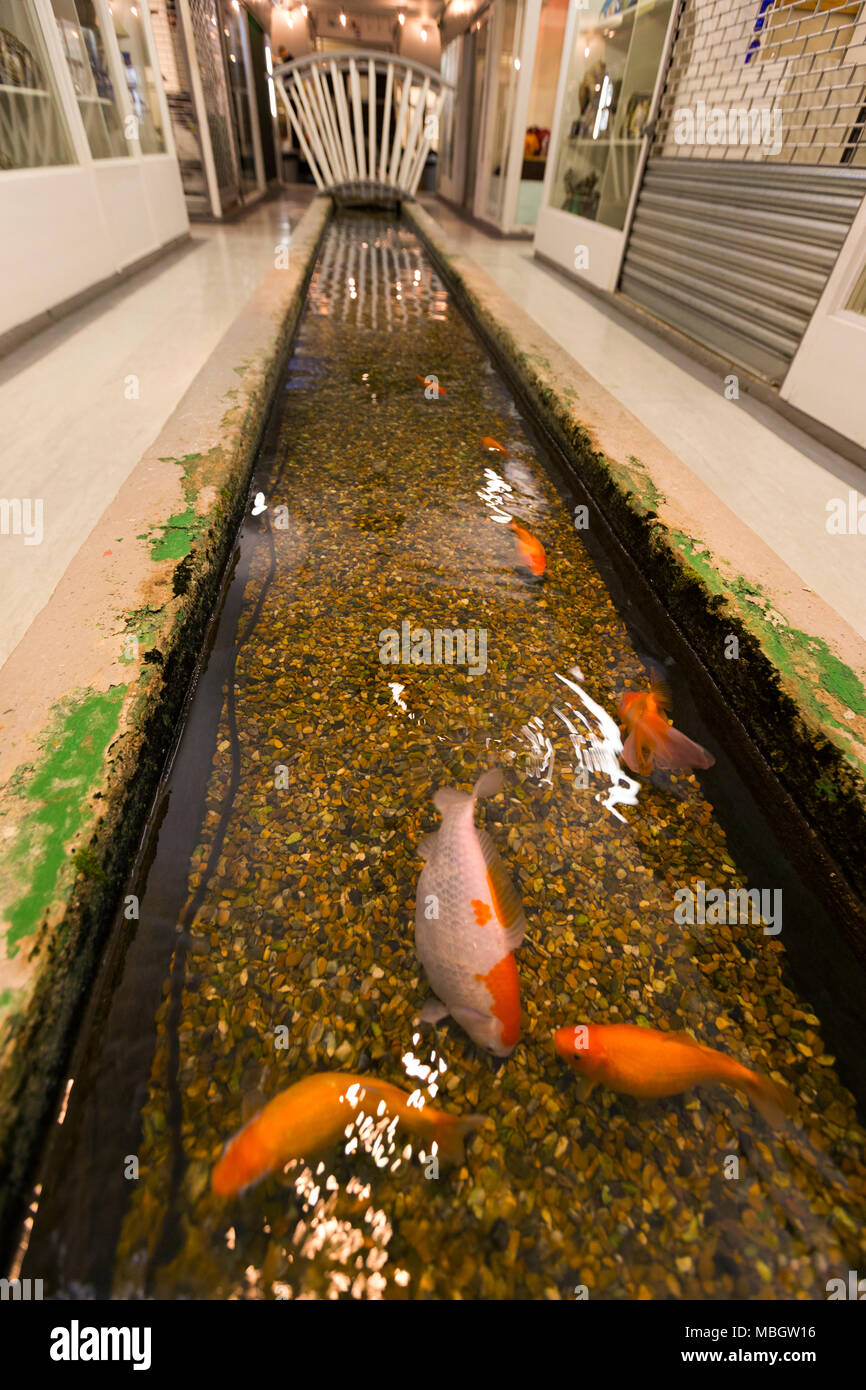 The Tyburn stream (which flows into the Thames) in the basement of Gray's Antiques in Davies Street, W1. London. (96) - Stock Image