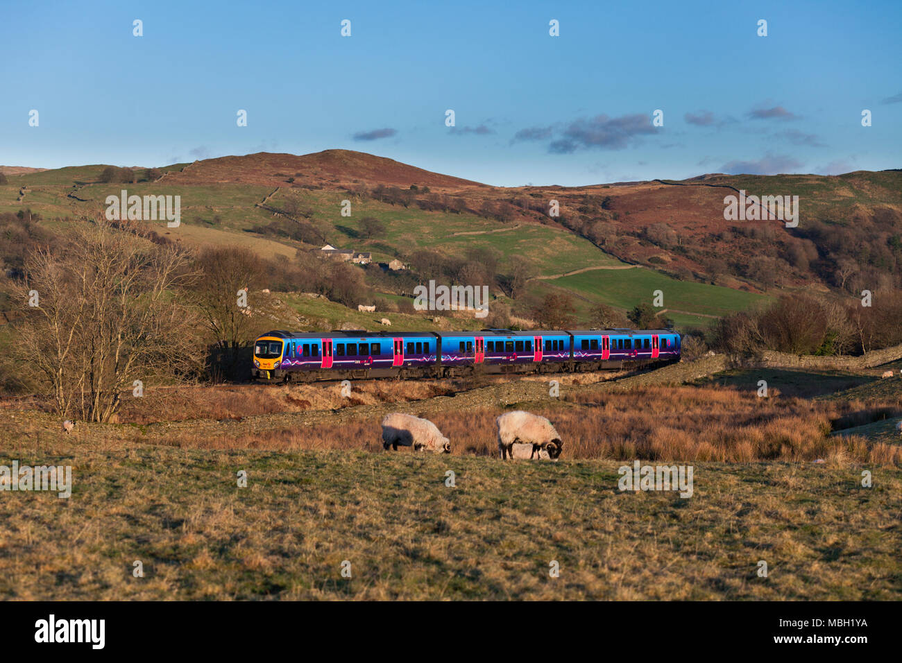 A First Transpennine Express class 185 diesel train at Ings on the Oxenhome to Windermere railway line - Stock Image