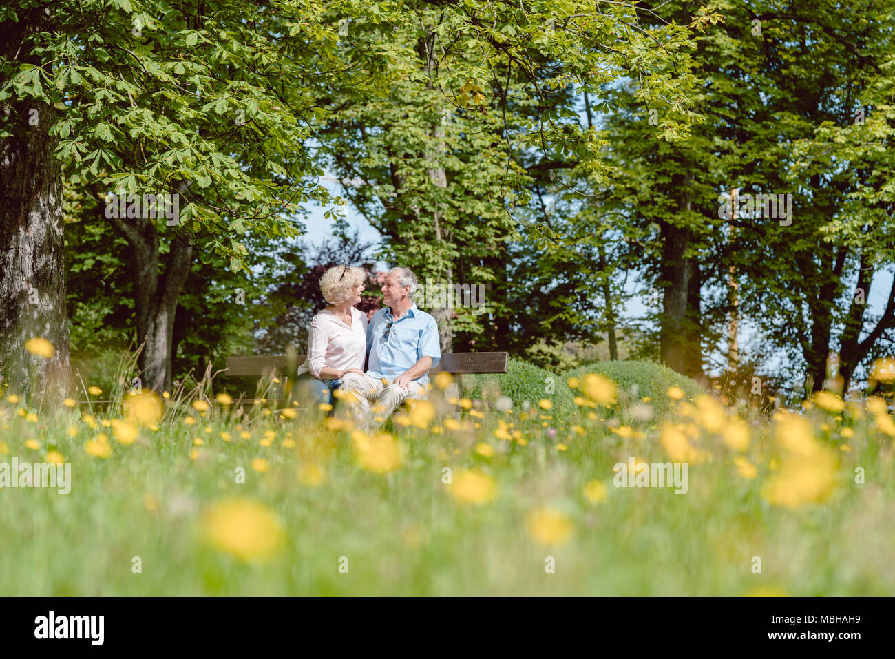 Romantic senior couple in love dating outdoors in an idyllic park - Stock Image