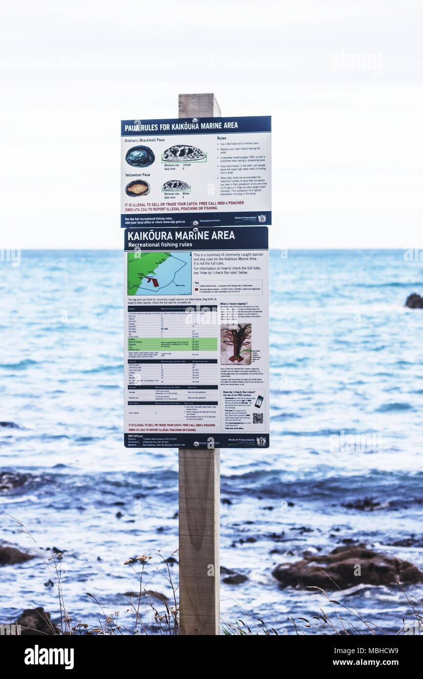 Information board showing Paua rules for the Kaikoura Marine Area issued by the Ministry of Primary Industries, New Zealand. - Stock Image