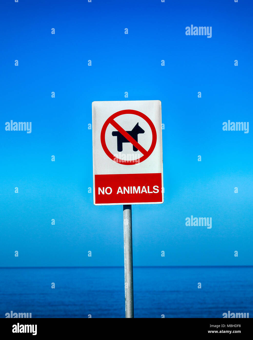 No Animals sign against blue sky and sea. Stock Photo