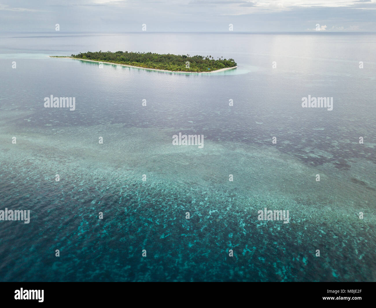 A beautiful coral reef grows near a remote Indonesian island in the Banda Sea. This region is in the Coral Triangle and has high marine biodiversity. - Stock Image