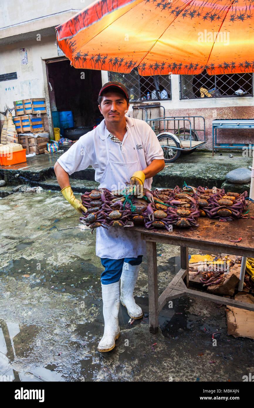 SANTO DOMINGO, ECUADOR - APRIL 15, 2010: Unidentified man selling crabs in the market of Santo Domingo, Ecuador. - Stock Image