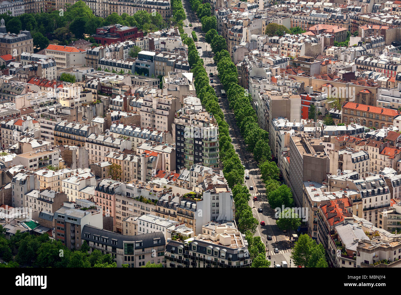 Aerial view of typical Parisian building and boulevard with green trees as seen from Montparnasse Tower in Paris, France . - Stock Image