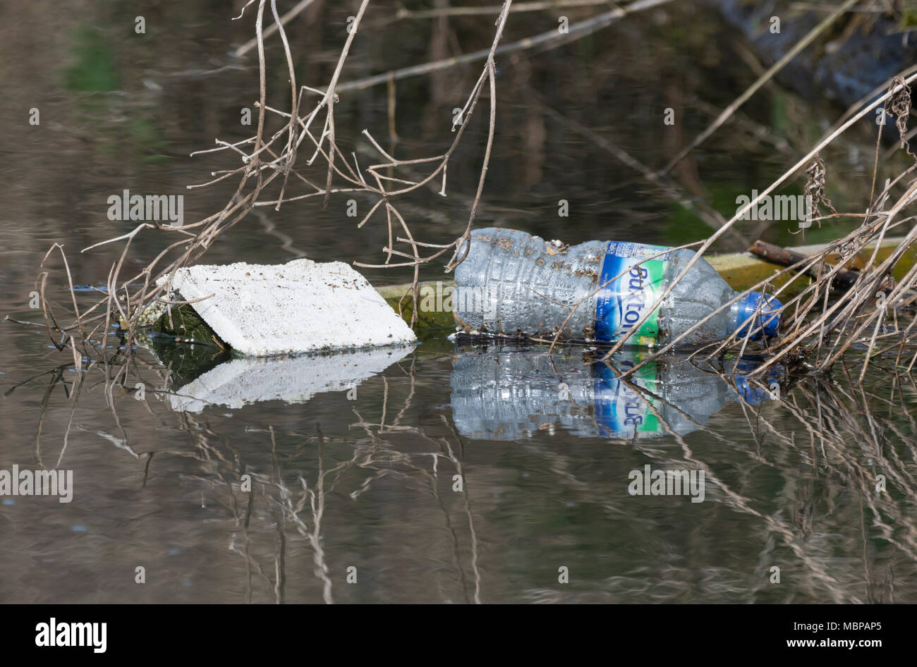 Discarded rubbish and a bottle floating in a stream. Littering UK. - Stock Image