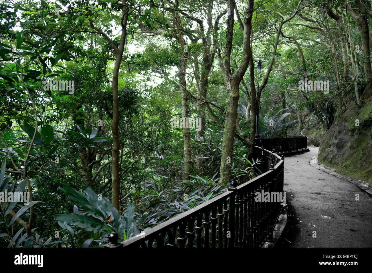 Walkway around Victoria Peak in Hong Kong, SAR of China - Stock Image