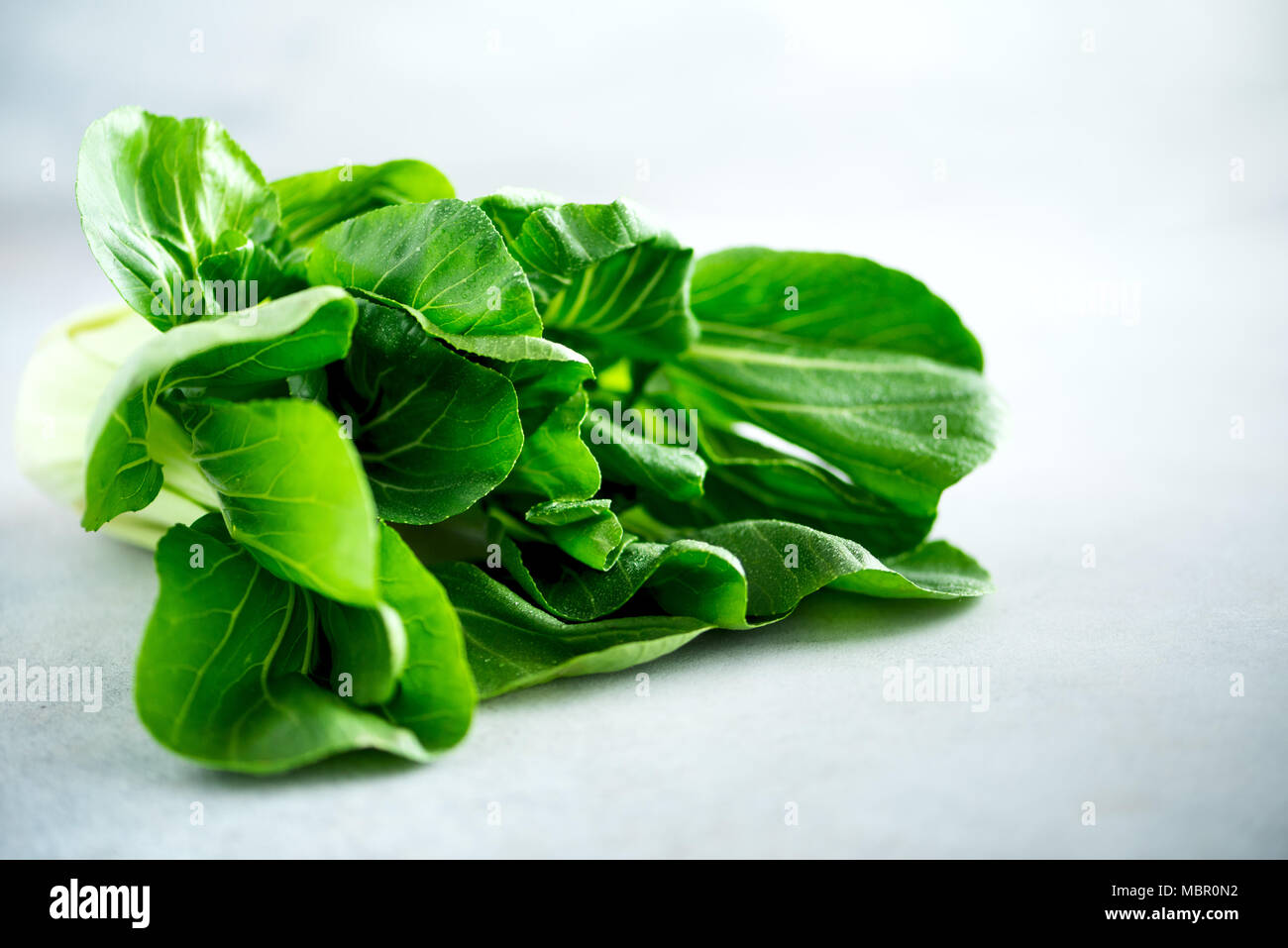 Green organic bok choy chinese cabbage on grey concrete background. Copy space, top view, flat lay - Stock Image