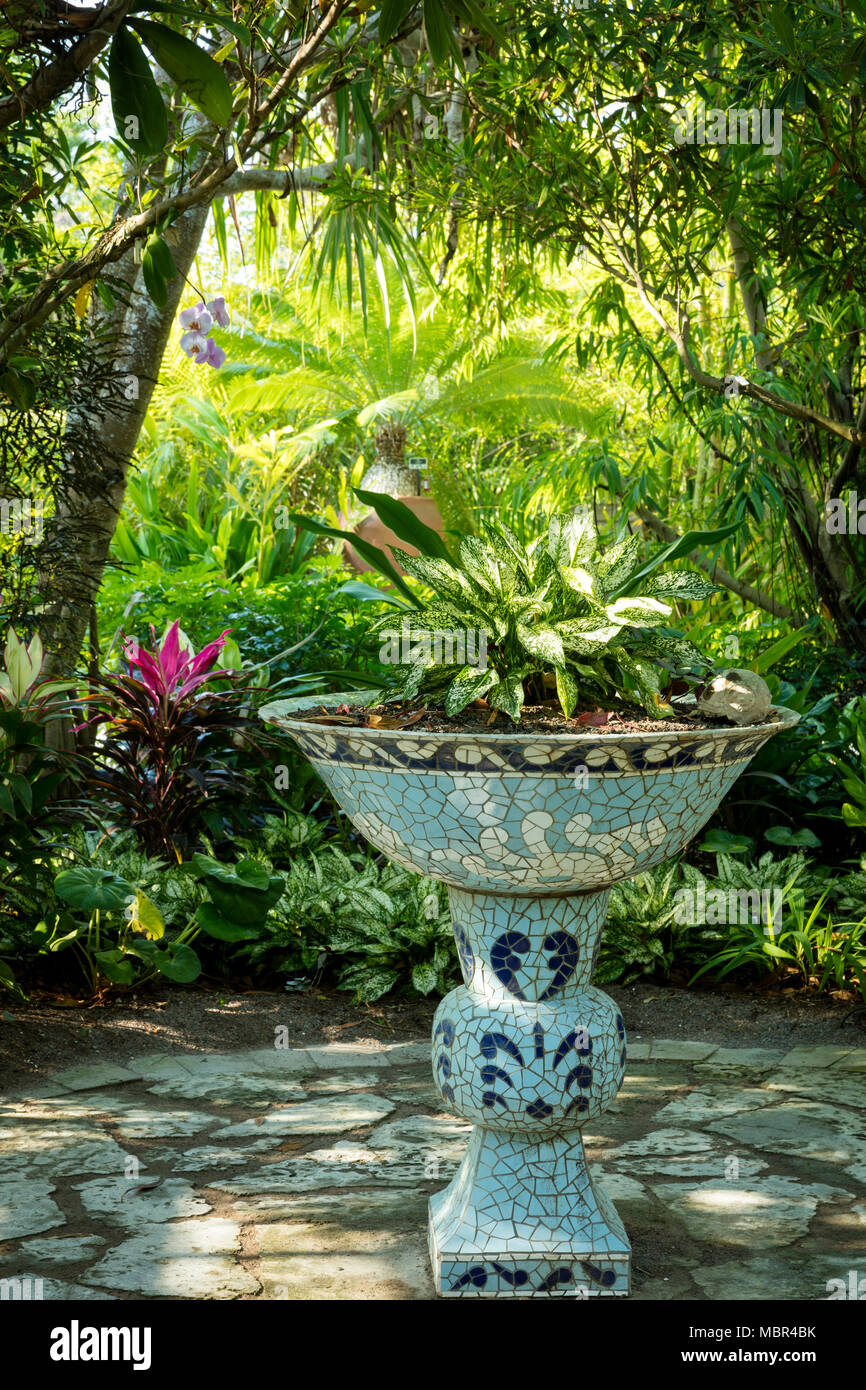 Traditional Ceramic Pot In The Asian Section Of Naples Botanical Gardens,  Naples, Florida, USA