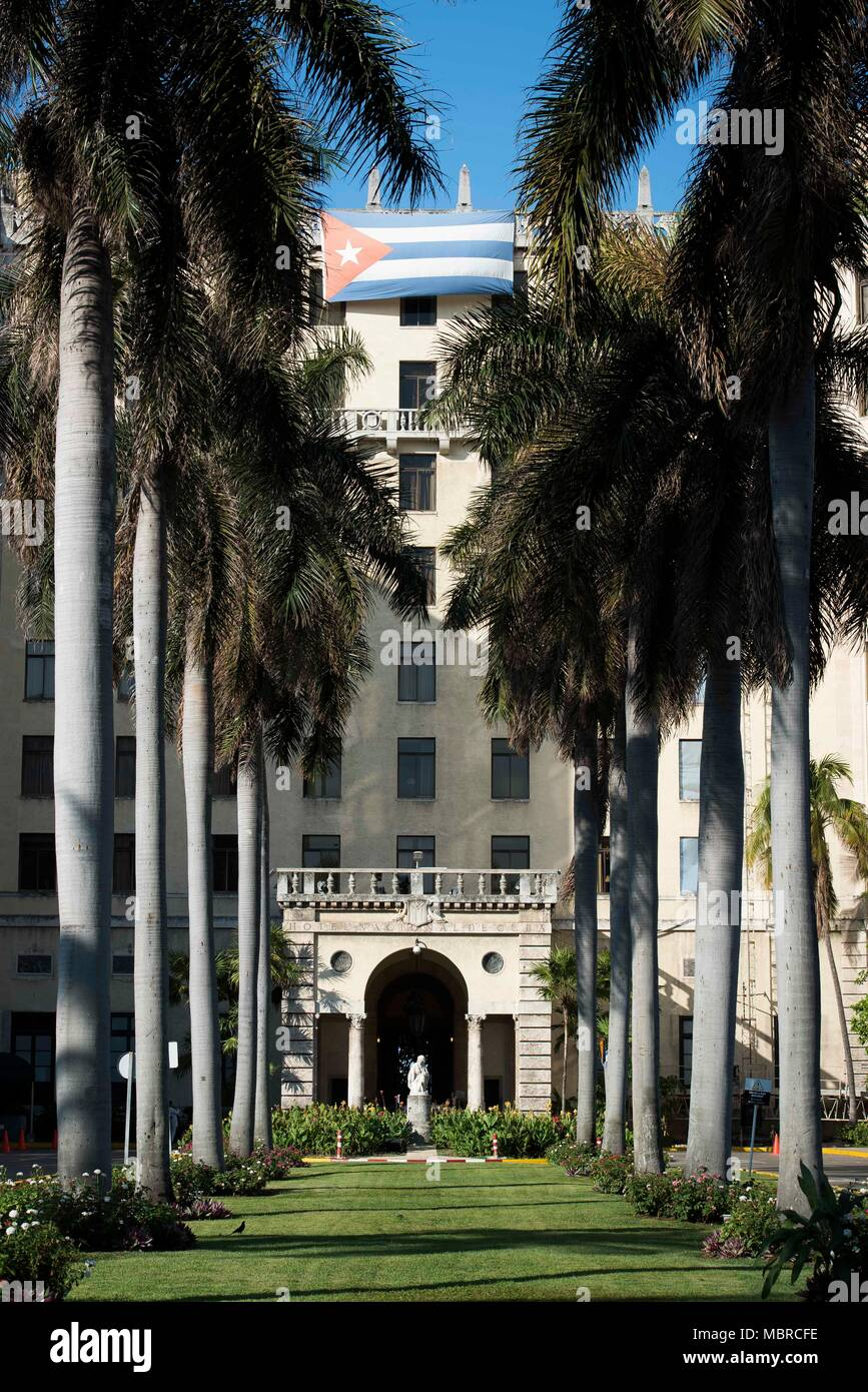 Row of palm trees in front of the Hotel Nacional of Cuba front entrance in Havana, Cuba. - Stock Image