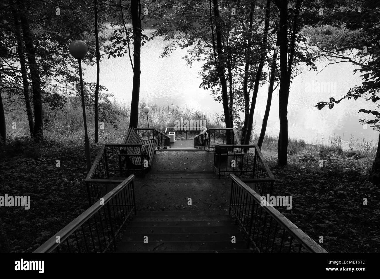 Black and white photo large staircase descending to the lake - Stock Image