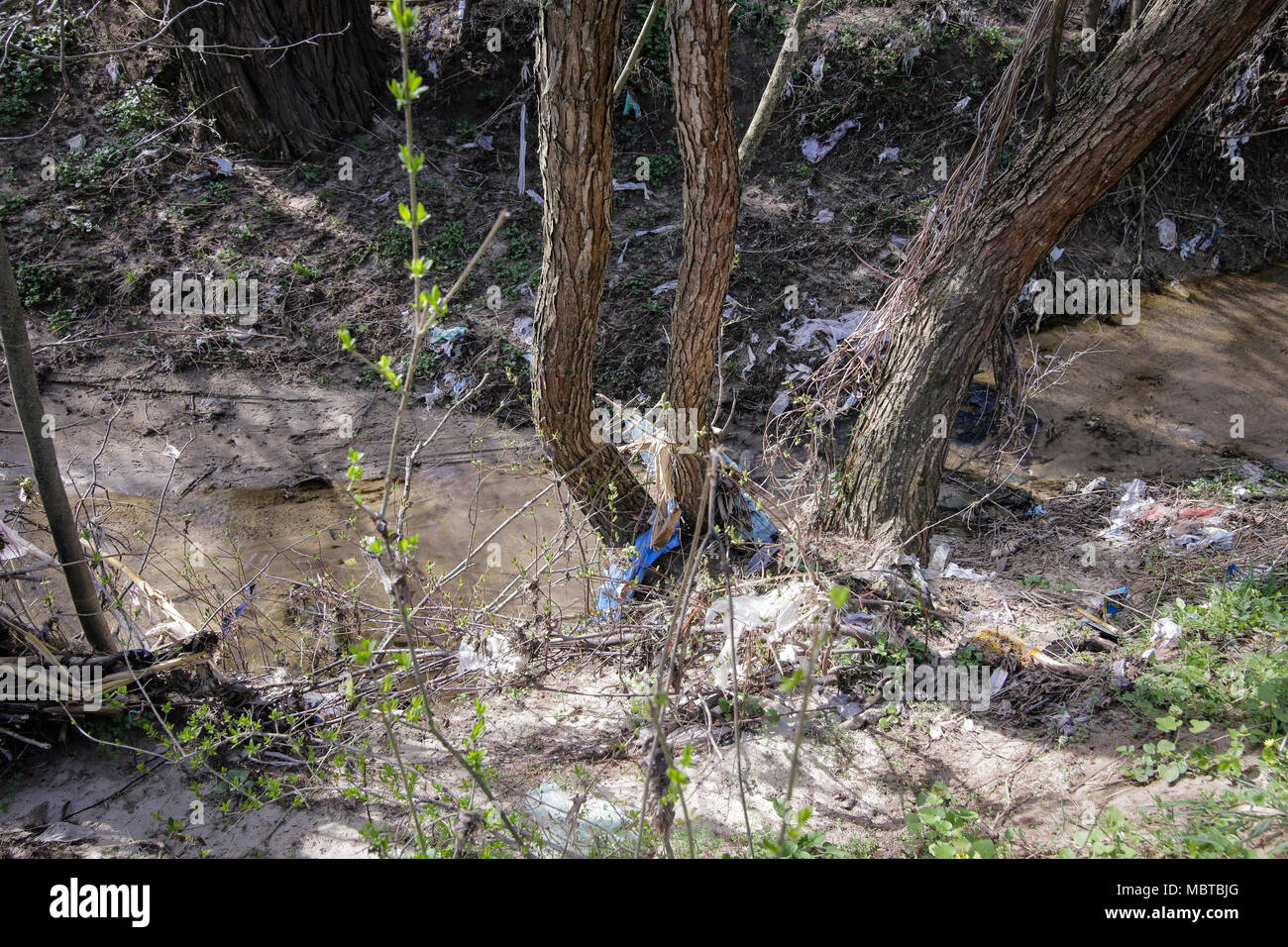 Heavy polluted water stream with domestic garbage - Stock Image