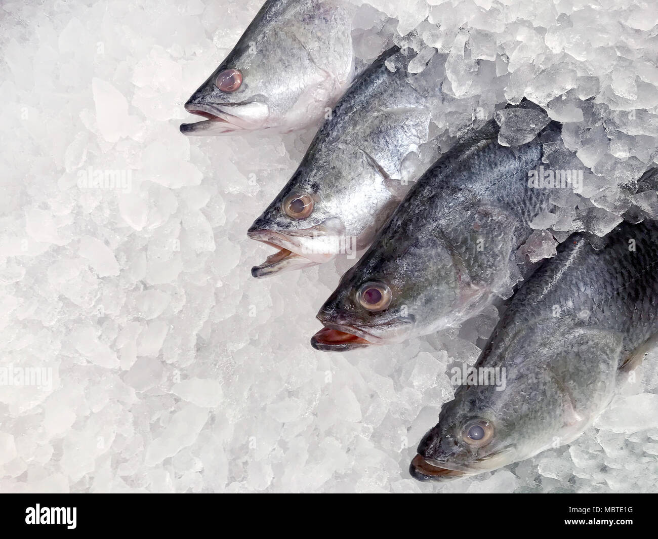 white snapper fish, raw fresh white snapper frozen in supermarket (selective focus) Stock Photo
