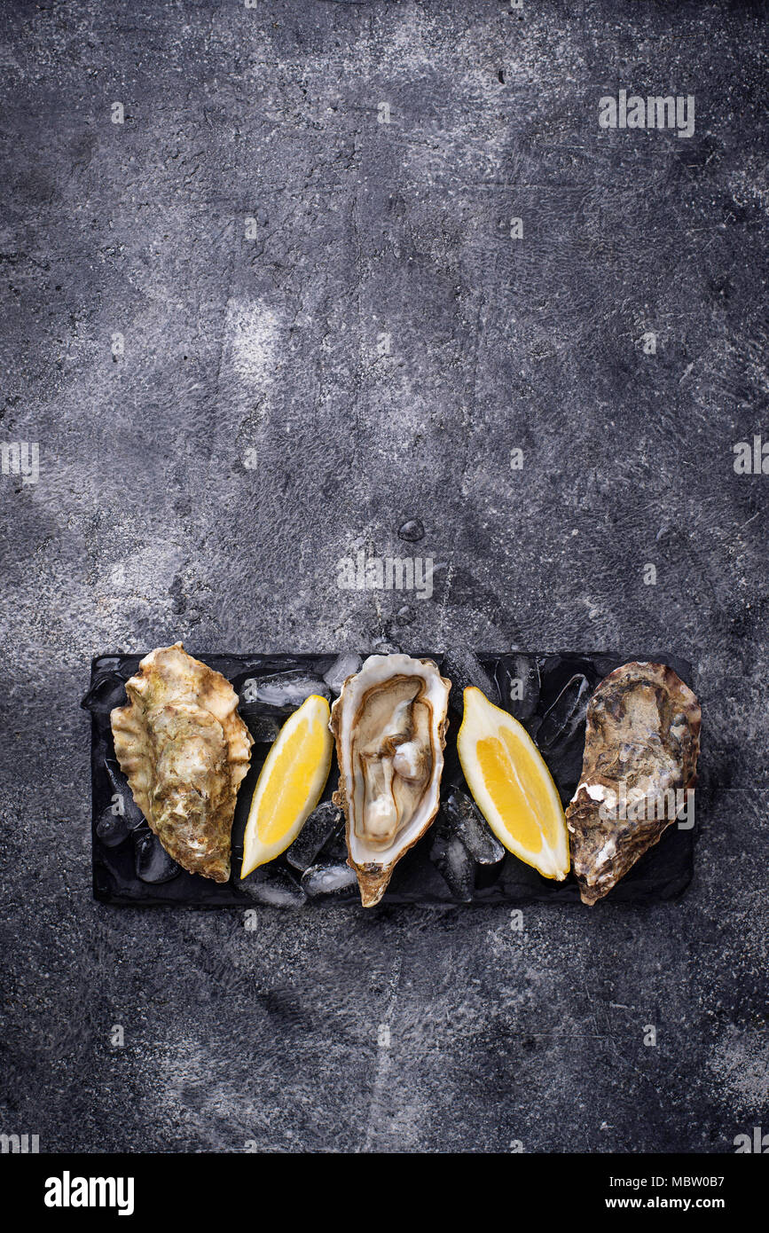 Fresh oysters with lemon on dark background - Stock Image