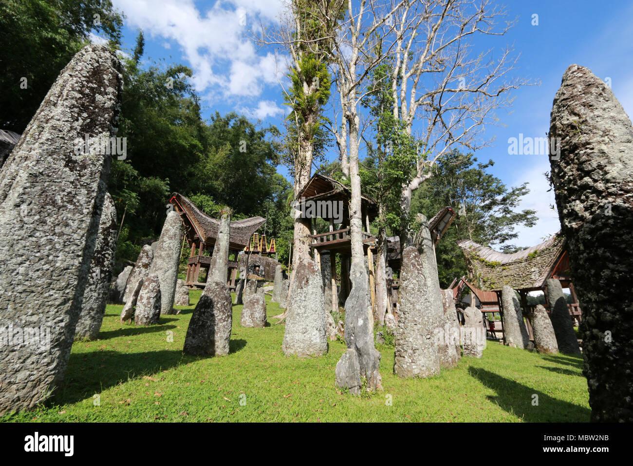 Upper Class Cemetery: Bori' Parinding Megalith Burial Site, Toraja, Sulawesi, Indonesia - Stock Image