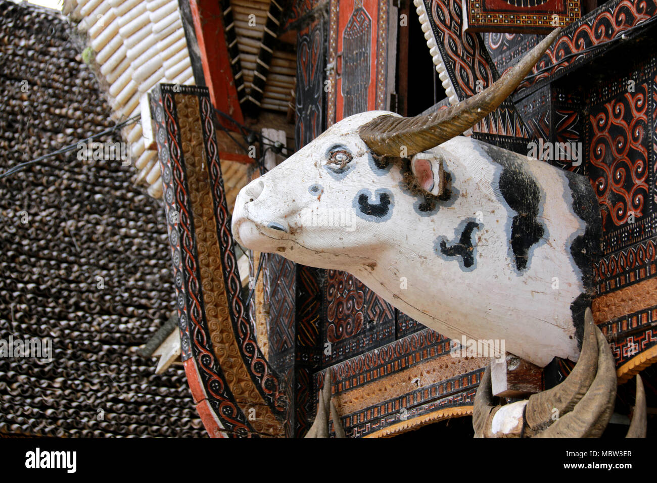 Buffalo Head on a Tongkonan, a traditional House at Toraja, Sulawesi, Indonesia - Stock Image