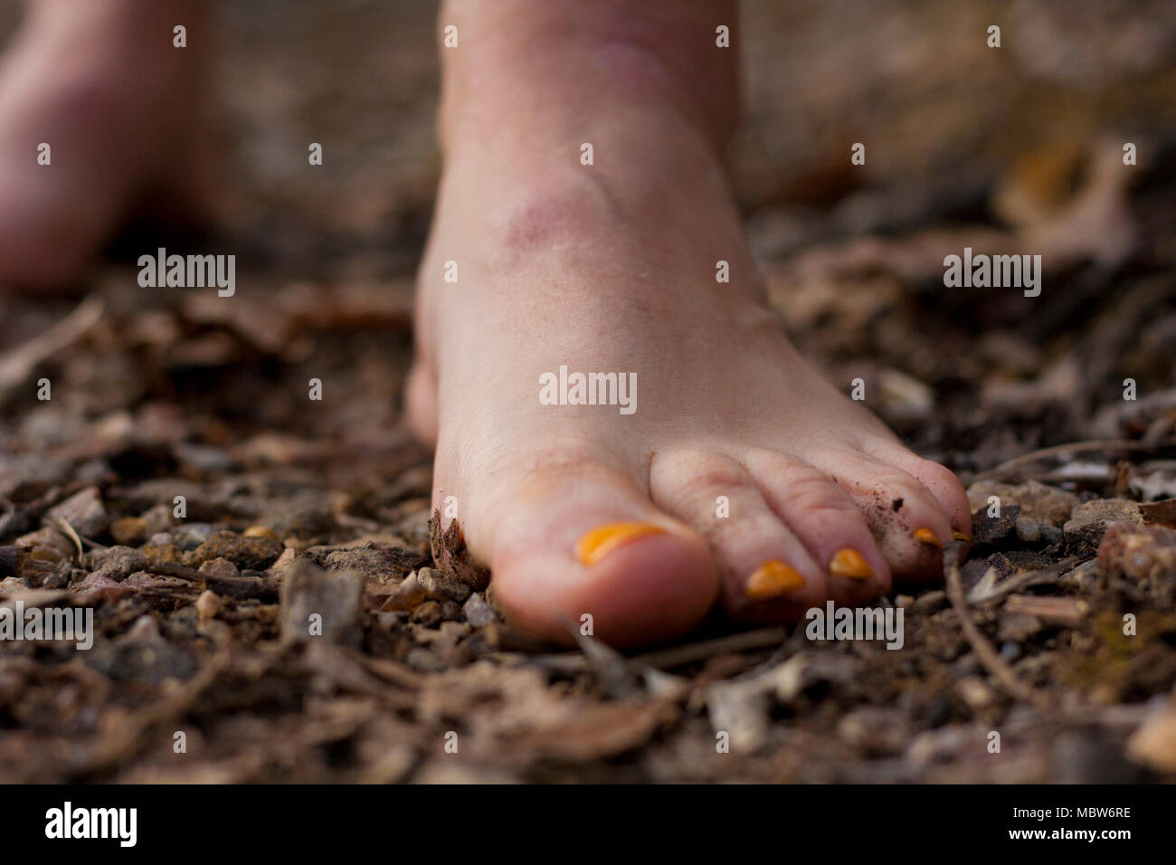 Forest bathing and Barefoot walking with feet in the fertile earth and soil under the toes with yellow polish. - Stock Image