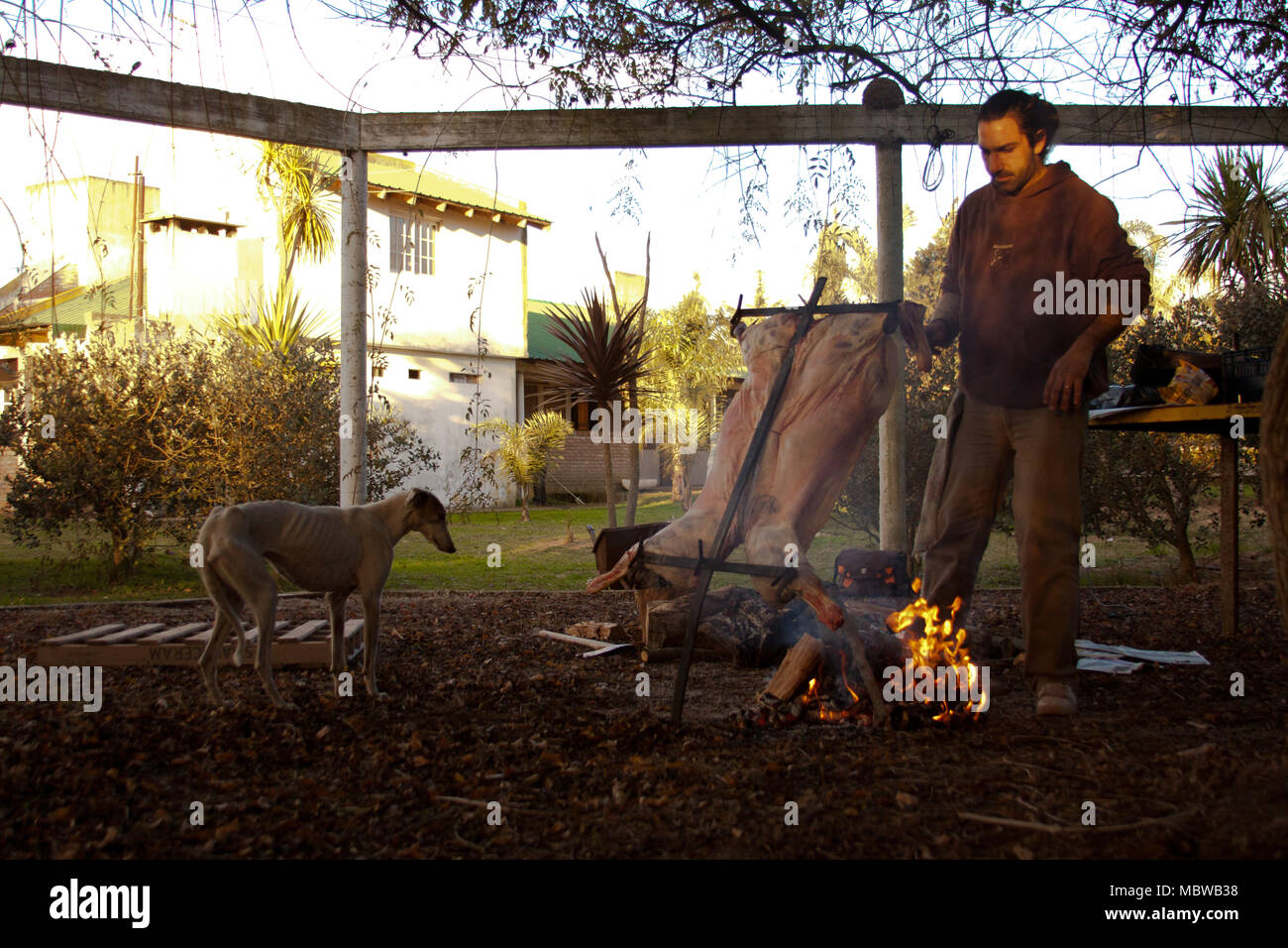 Cooking meat outside - Stock Image