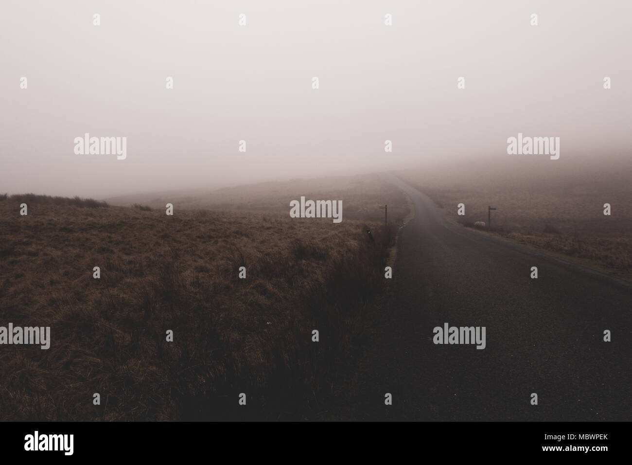 Fog obscures view along a countryside road with two signposts pointing in opposite directions, Yorkshire, UK - Stock Image