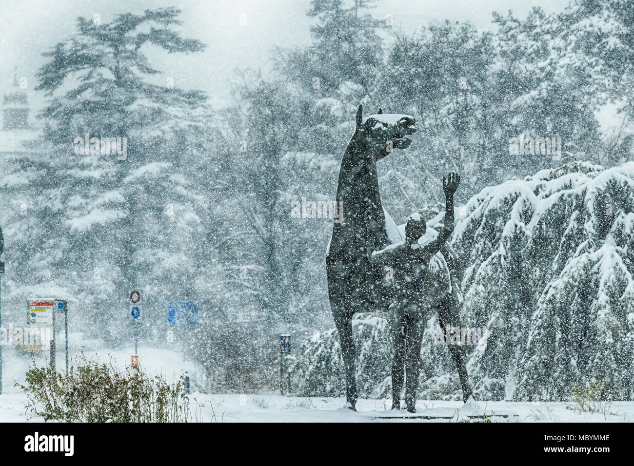 The teenager and the horse is a bronze statue created by sculptor Heinz Schwarz,lies on the shores of Lake Leman in Geneva. It's snowing. - Stock Image