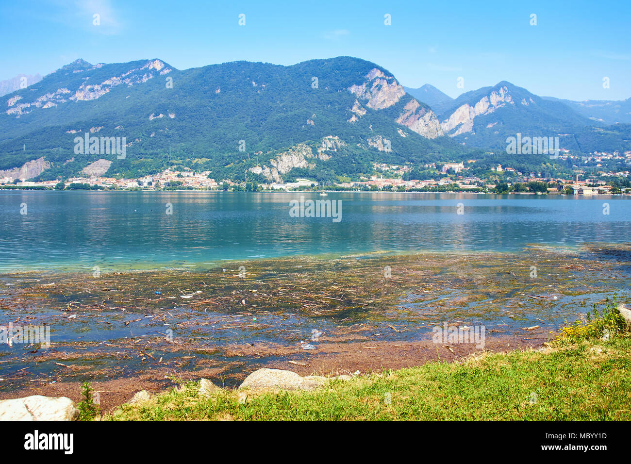 Dirty water with algae on lake Como in Italy - Stock Image