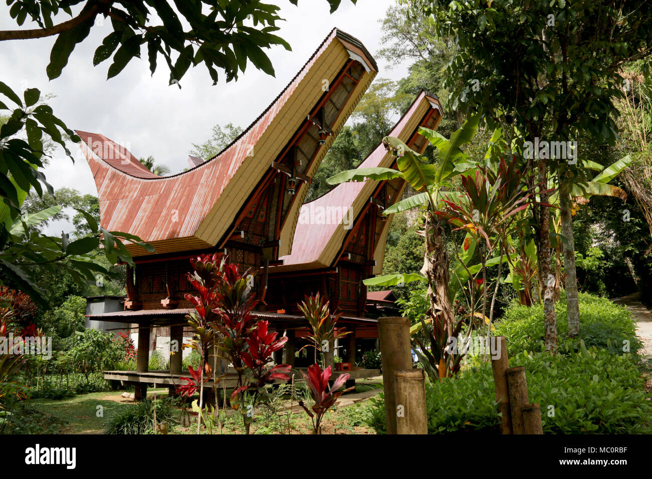 Tongkonans, traditional Toraja houses with massive peaked-roofs, in a Village near Ke'te' Ke'su, Toraja, Sulawesi, Indonesia - Stock Image