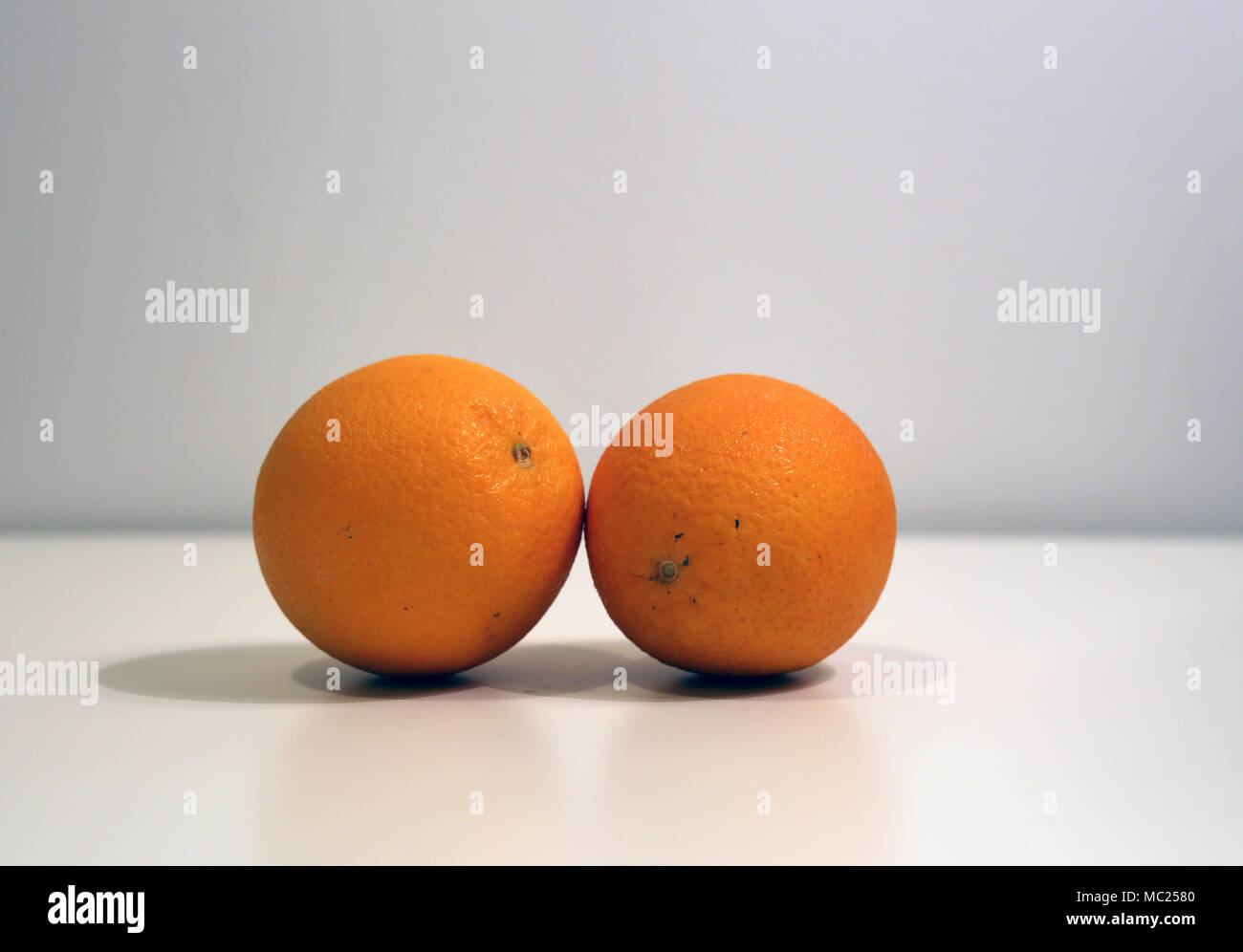 Two oranges on a table leaning on each other. Simple and beautiful fruit still live with white / gray background. - Stock Image