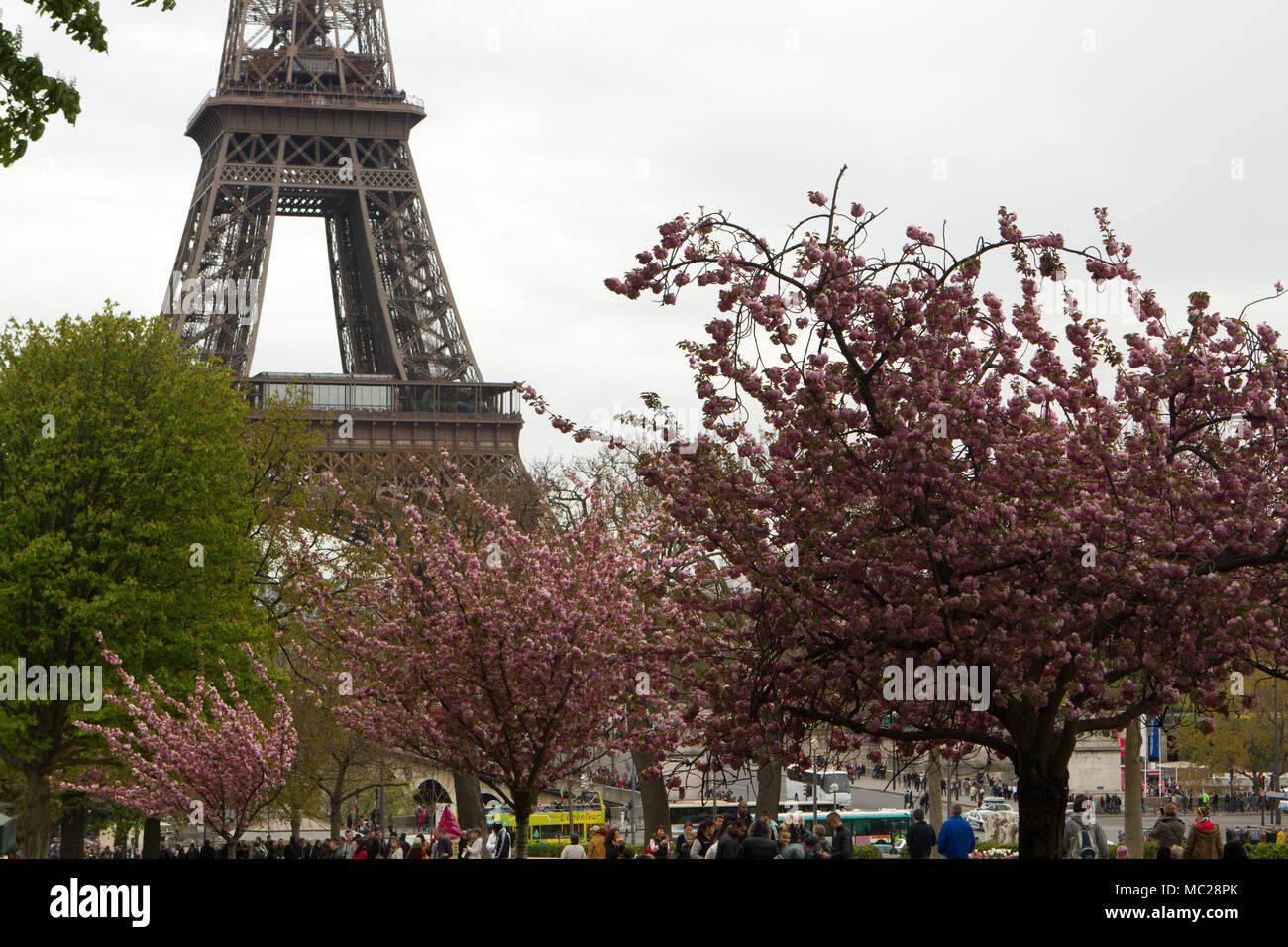 Paris Eiffel tower - Stock Image