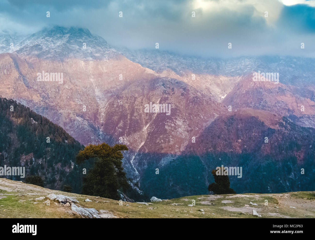 View of the Dhauladhar Mountain Range from Triund Hill, Himachal Pradesh, India - Stock Image