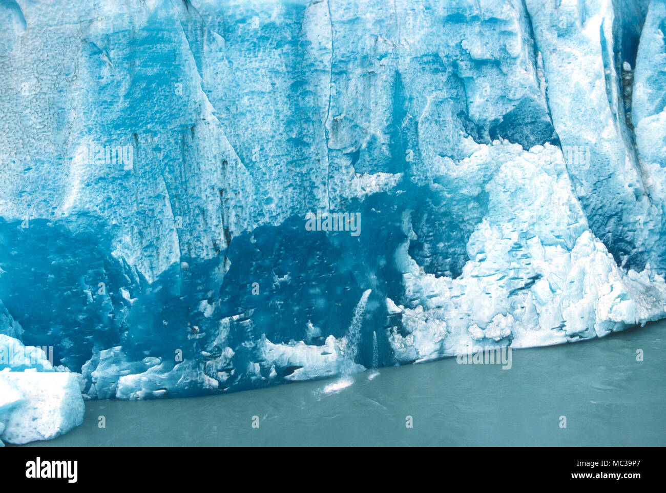 Exposed face of the Mendenhall Glacier in Alaska - Stock Image