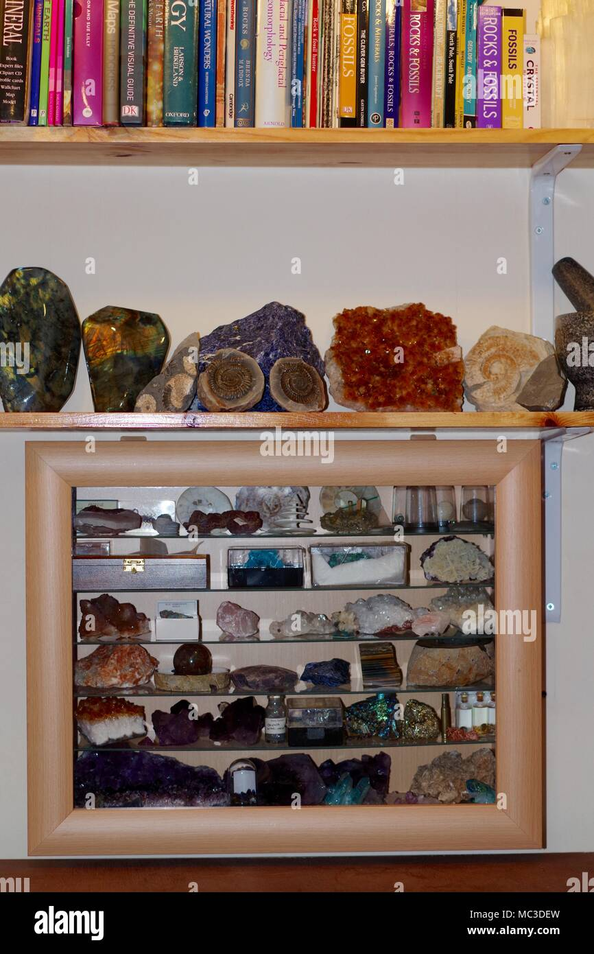 Geological Crystal Display Cabinet And Bookshelf Earth Science UK
