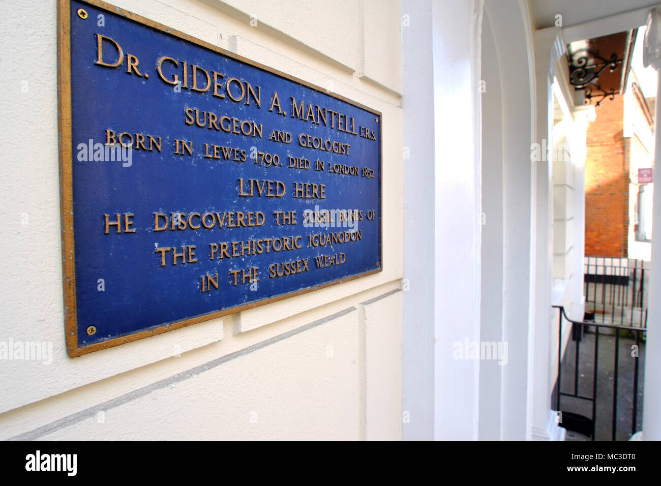 Blue sign on the home of Dr Gideon Mantell, the first person to discover the fossil bones of an iguanadon. - Stock Image