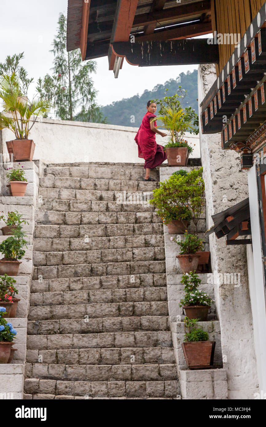 The view of the Punakha Dzong considered as Palace of the great happiness at Punakha, Bhutan - Stock Image