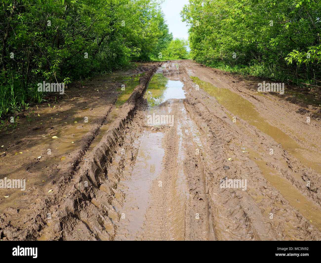 Wet muddy country road, A country road with ruts and puddles, spring Stock Photo