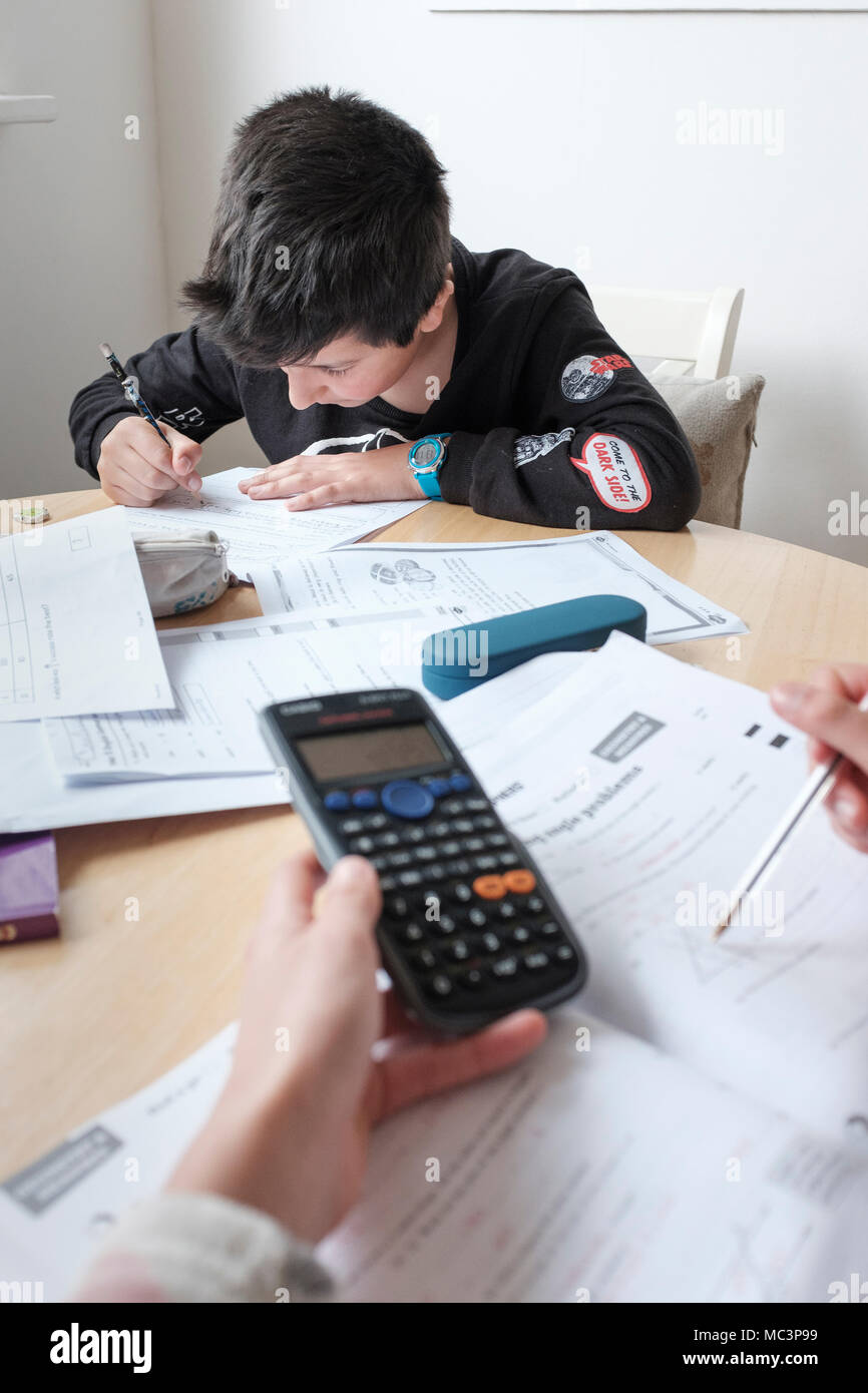 Children study together- revising exams papers at home - Stock Image