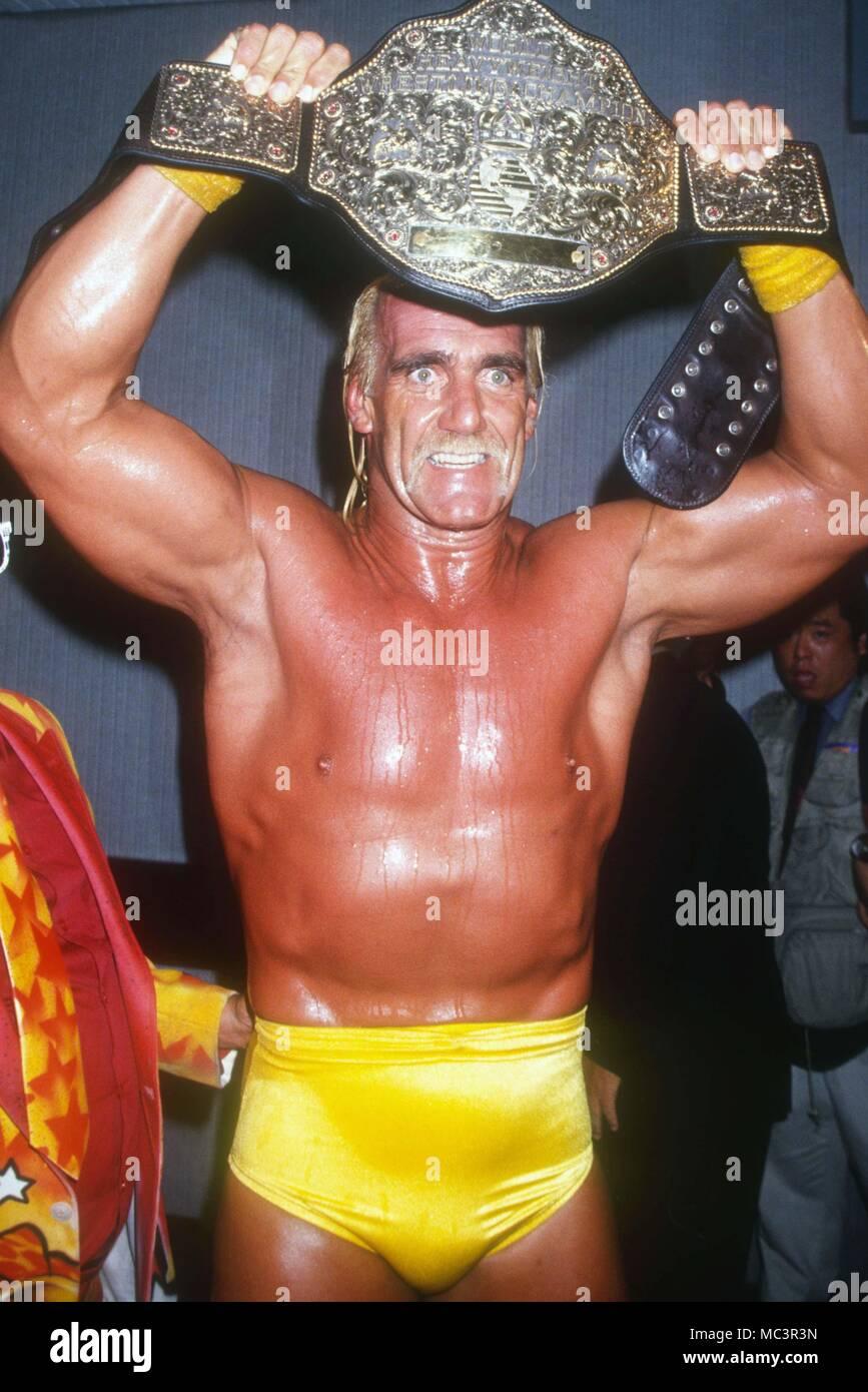 Randy orton hulk hogan-4251