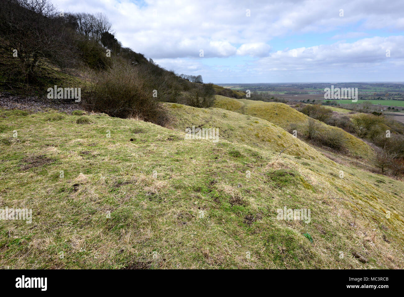 Old chalk pits in Malling Down nature reserve in the South Downs National Park, Lewes, East Sussex, UK - Stock Image