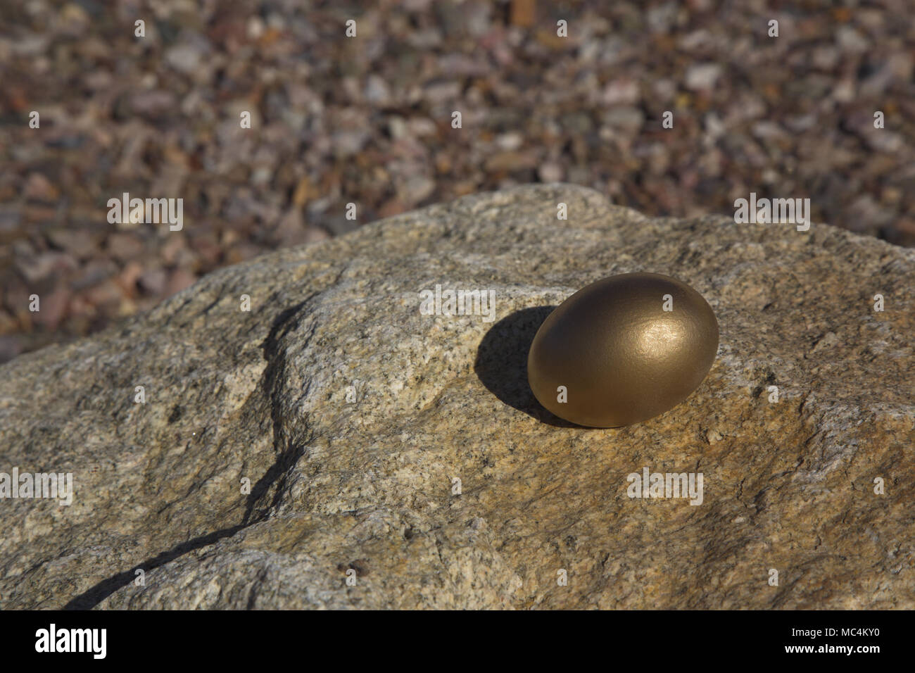 Single gold nest egg placed on hard rock is conceptual image of  investments endangered in a challenging economic environment.  Risk reflects need to  - Stock Image